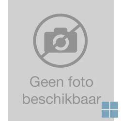 Bulex voorgeisoleerde inox duobuis (2 x 16mm) 15m | 0020020412 | LAMO